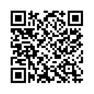 qr code catalogo Minerva